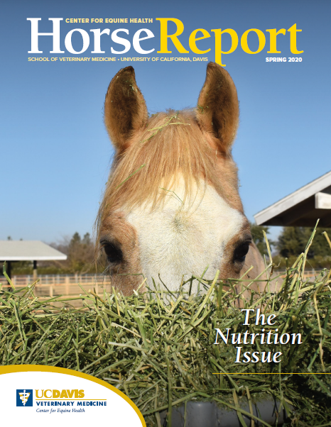 Cover Spring 2020 Horse Report