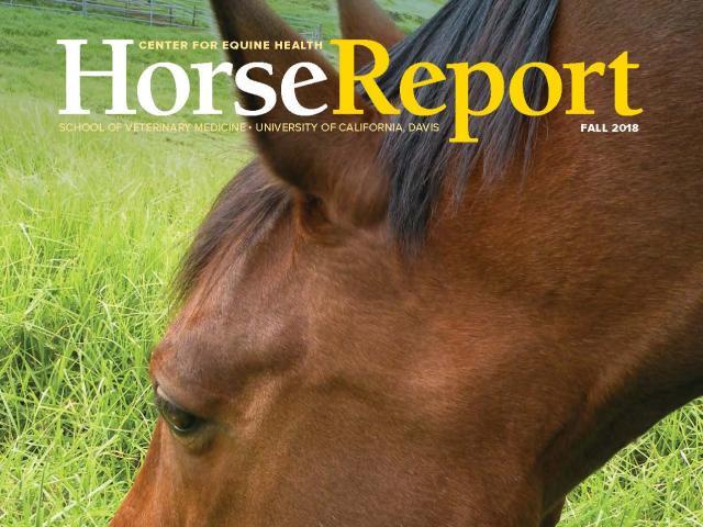 Center for Equine Health | School of Veterinary Medicine